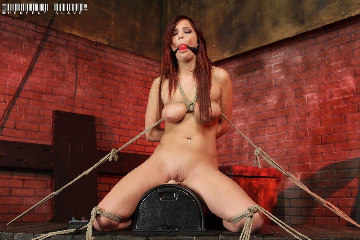 Jayden cole bondage